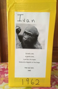 Ivan Story Cube